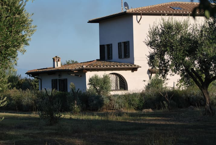luxury countryhouse - Nepi - Willa