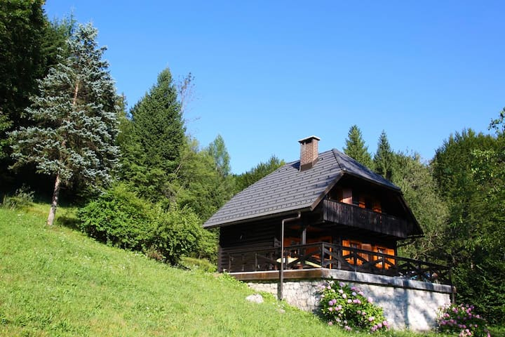 Cottage in the woods - Bohinjska Bistrica - Chalet