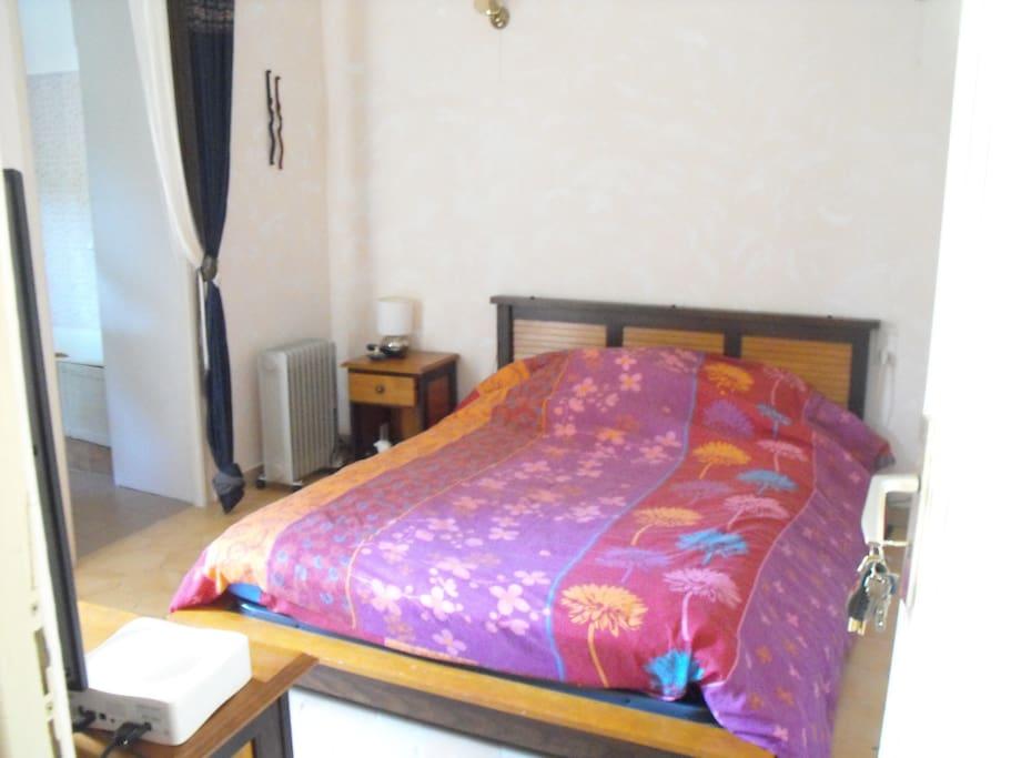 chambre avec salle de bain priv e maisons louer avignon provence alpes c te d 39 azur france. Black Bedroom Furniture Sets. Home Design Ideas