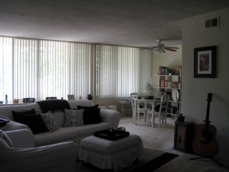 Spacious living room with a wall of windows facing the beautiful tree-lined street (before remodel)