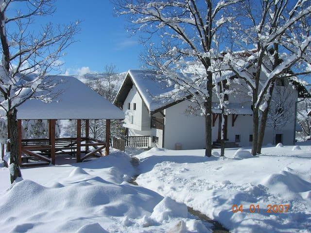 LOVELY APARTMENT - ZLATIBOR - Zlatibor - House