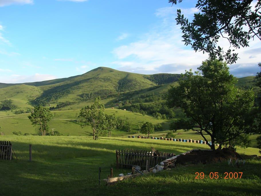 Cigota hill