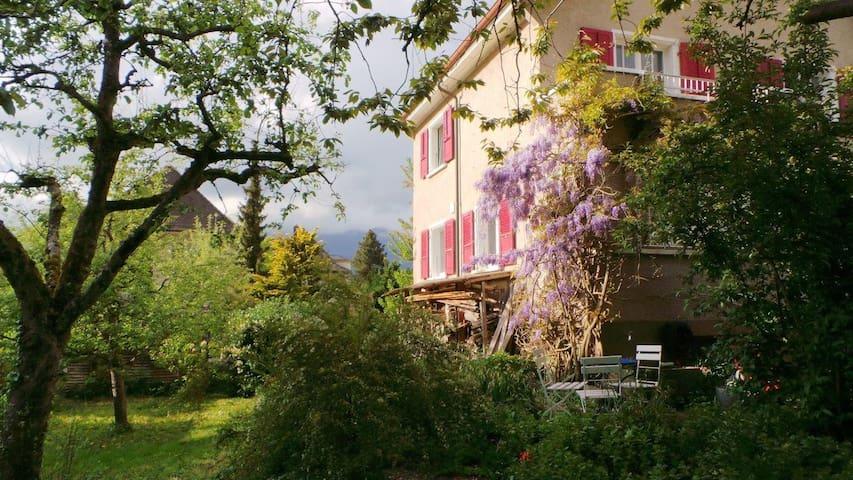 """Zimmer mit Jurasicht im """"au jardin"""""""