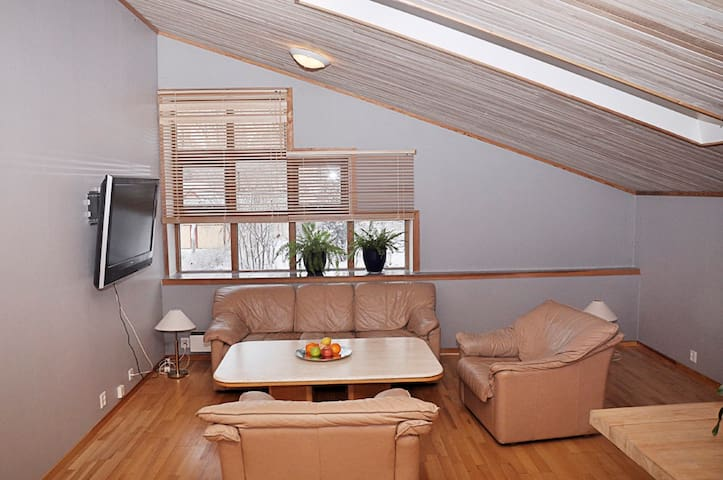 Living-room with possibility for 2 additional beds.
