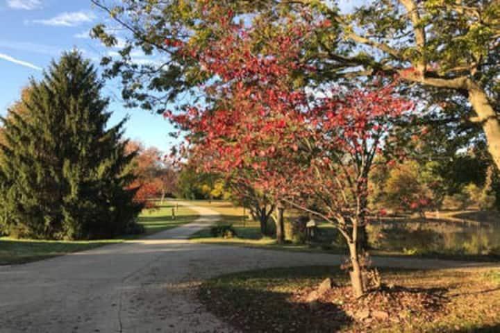 Serene wooded home
