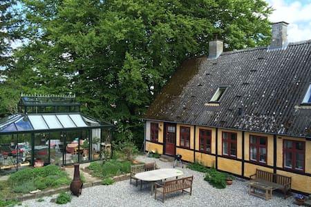 Bakkegaarden, værelse Viola  - Eskilstrup - Bed & Breakfast