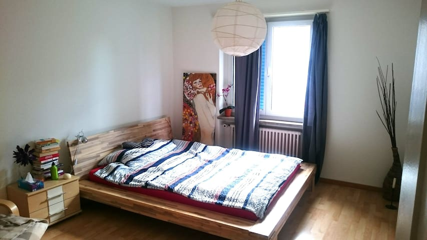 fully furnished flat (cats opt.) 20 min to Zurich