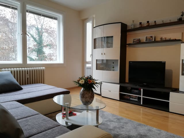 Bright, quiet and cozy room in Steglitz