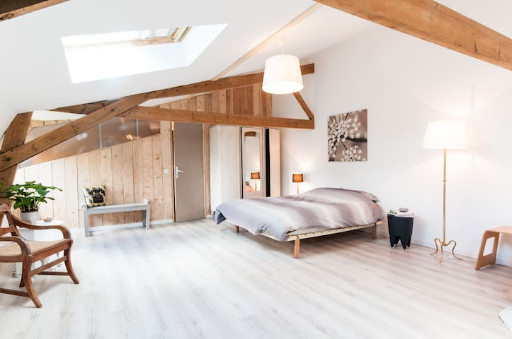 La Chicorée , Grand studio cosy de 60m²
