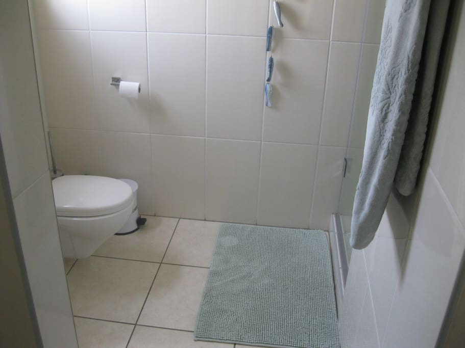The bathroom, basin and shower on the right