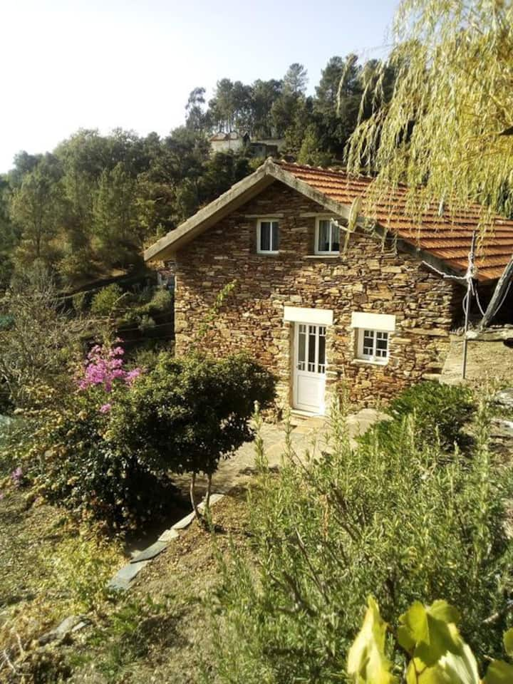 Home in an Old Village in the Douro Region
