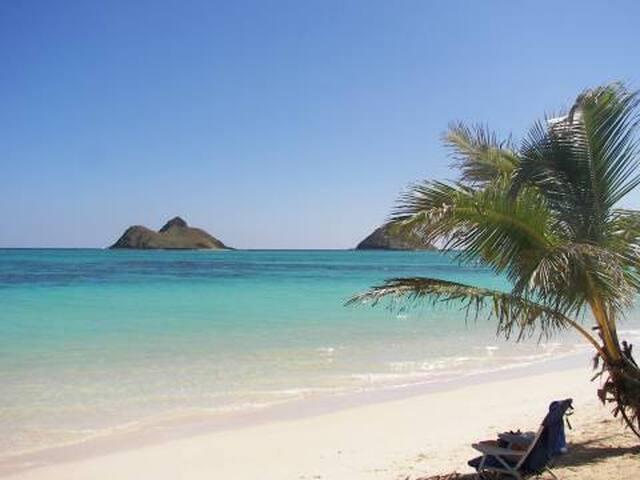Coral Estate by the Ocean - Kailua - Villa