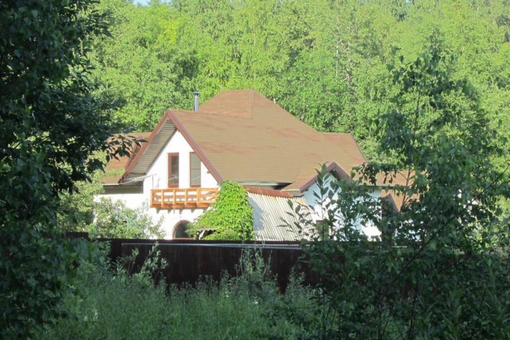 Садовое товарищество расположено в лесу и состоит из нескольких улиц
