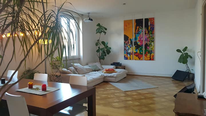 Very cozy 2-bed room apartment close to BaselWorld