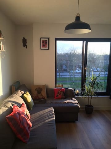 You are very Welcome!!! - Dublin - Apartment