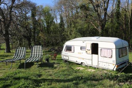 Audrey the Caravan - Upper Dicker - Wohnwagen/Wohnmobil