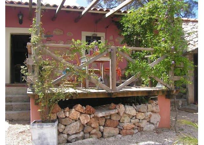 Ti Galinha Cottage in Natural Park - Porto de Mós - Casa