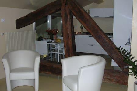 Loft dal cuore di vetro - Pavia - Loft