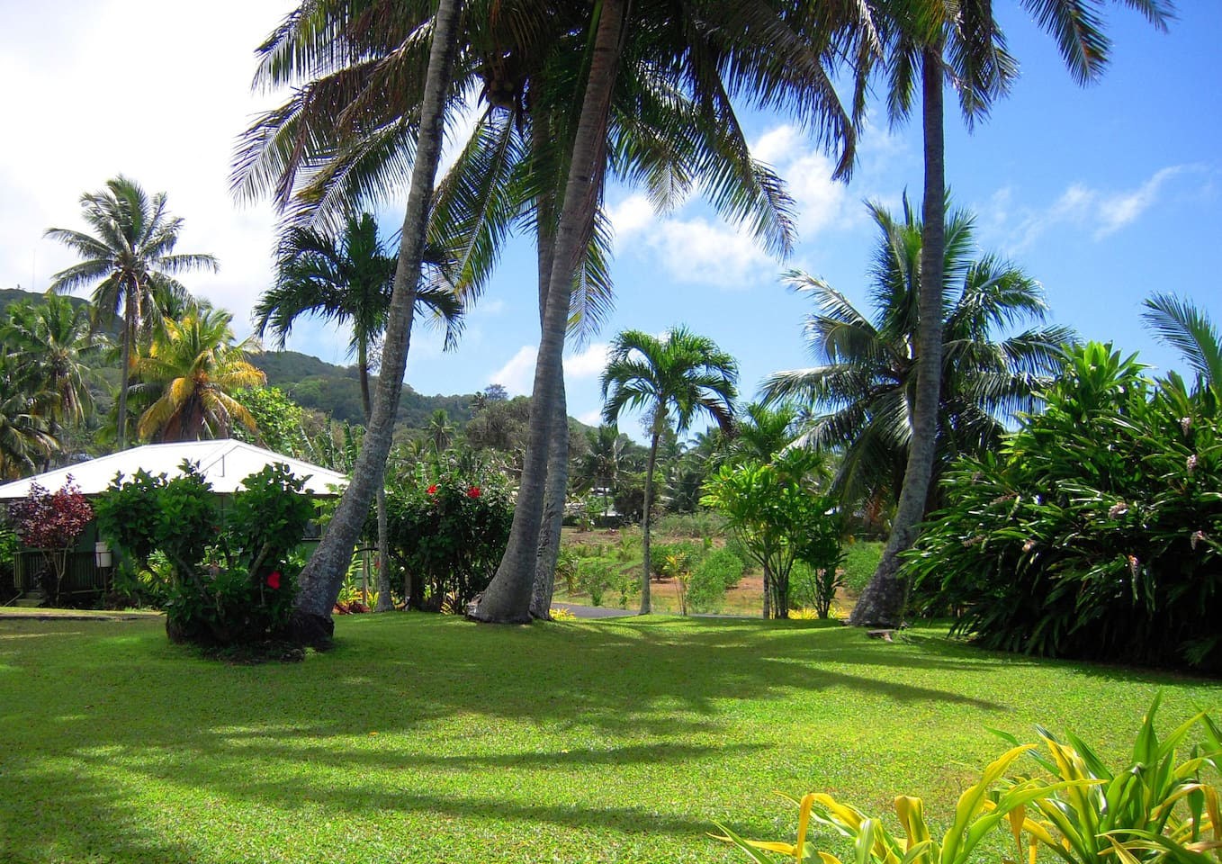 SPACIOUS GREEN TROPICAL GARDENS MAINTAINED BEAUTIFULLY FOR YOUR USE & ENJOYMENT