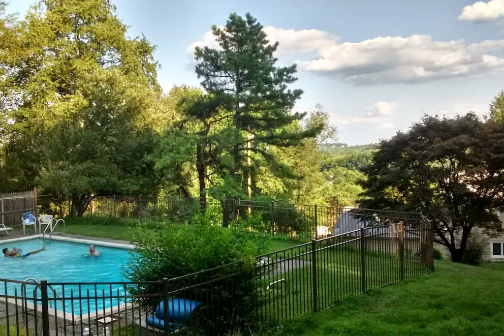 Backyard Panoramic View (Spring/Summer Picture)