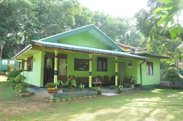 Green Villa - Bentota - House