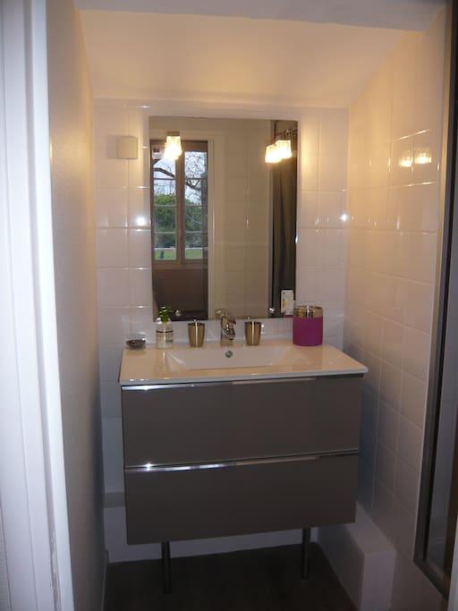 salle d'eau avec douche (WC indépendant)