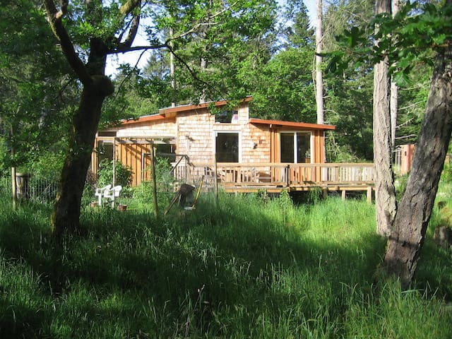Cabin set in  naturalists haven - Salt Spring Island