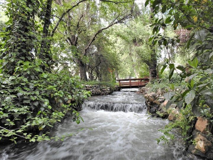 Fern Creek Cottage- peaceful creekside setting