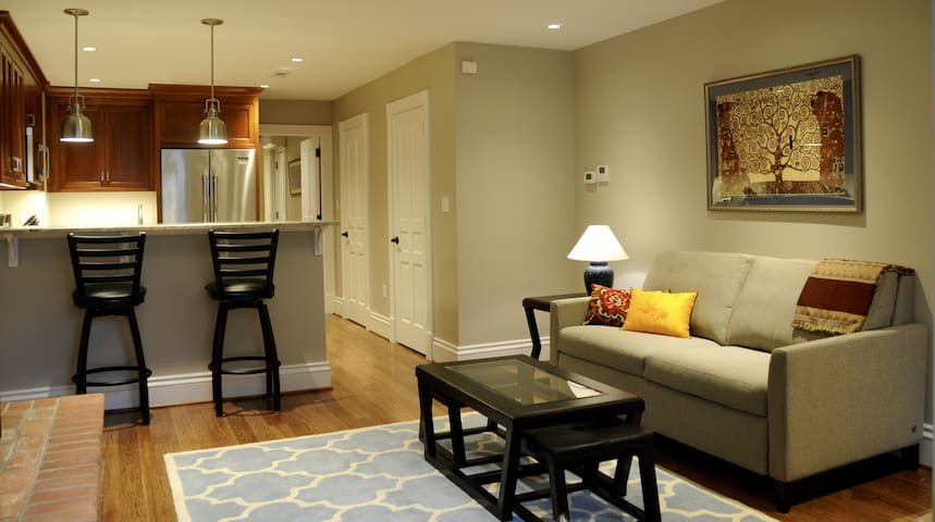 Deluxe Georgetown Suite! Sleeps 4 on P Street - Washington - Apartment