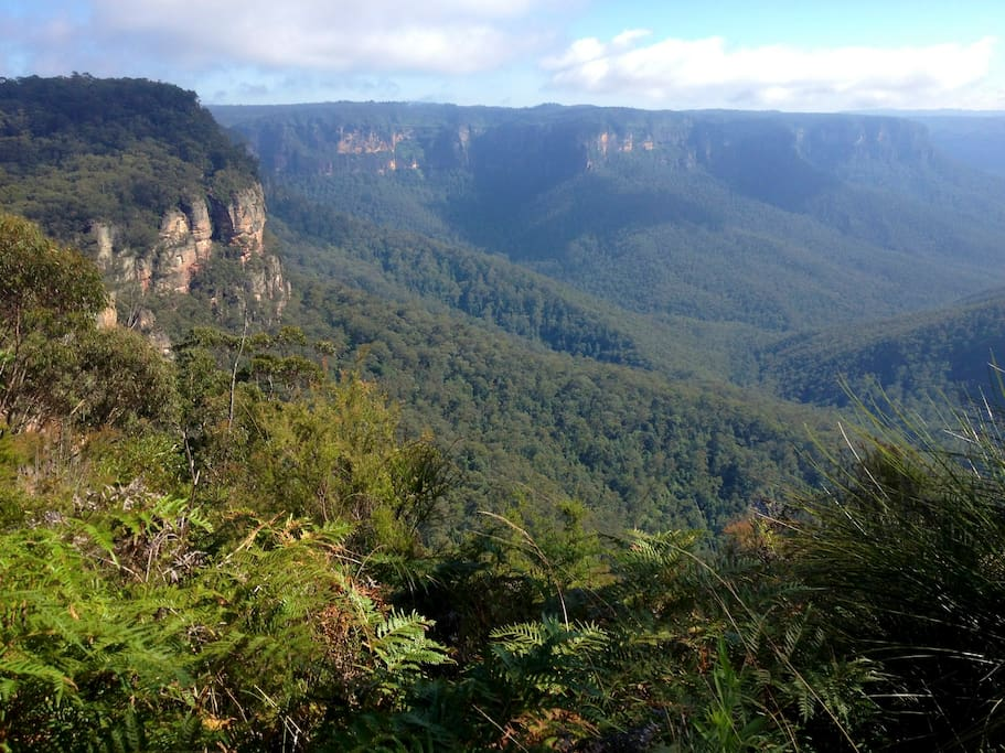The Blue Mountains World Heritage area is just a 3 minute drive away.