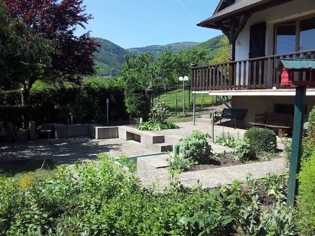 Gite Bellevue 140m² / 3000m² garten - Breitenbach - Casa