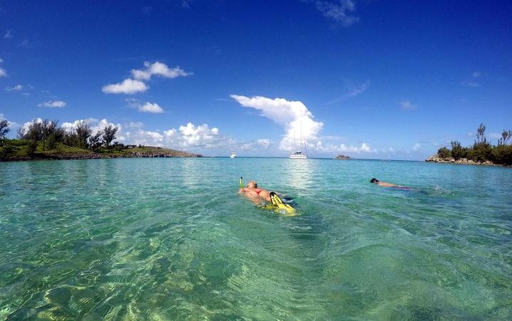 Snorkeling Whalebone Bay