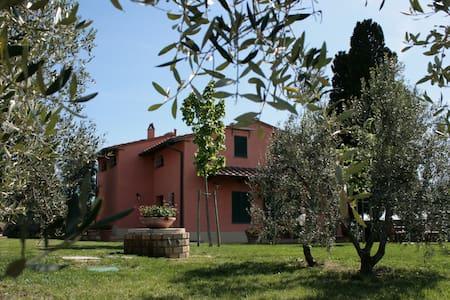 Villa Gli Olivi - Sovigliana Vinci - Sovigliana - Ev