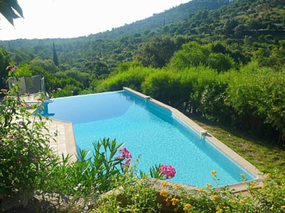 Splendide villa vue mer et piscine maisons louer for Camping bormes les mimosas piscine