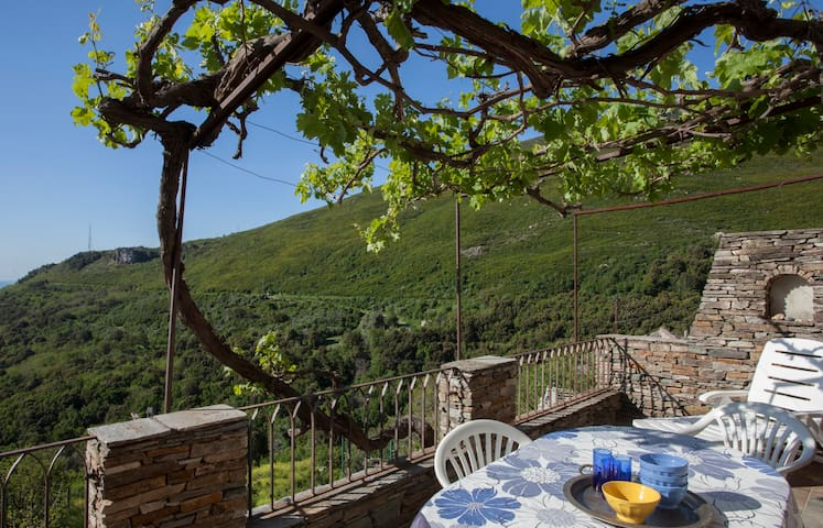 maison de village avec terrasse  - Brando - Hus