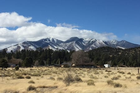 The Cove Flagstaff Mountain View Home