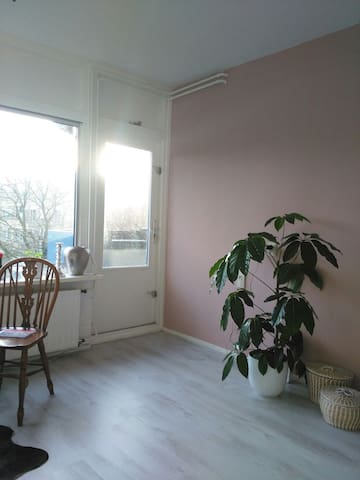 Light apartment, free parking - Amsterdam - Byt