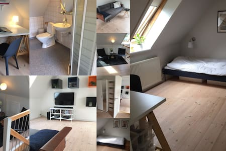Large room in nordic style with sofa arr. & bath