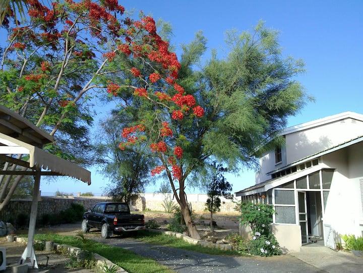 Mahasoa's villa
