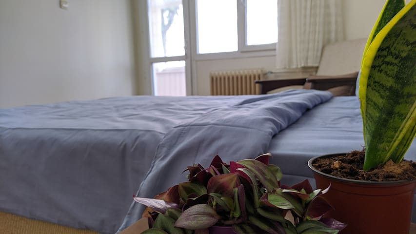 TR-Cift kişilik büyük Yataş yatak sayesinde rahat bir şekilde uyuyacak, her misafire özel verdiğim yeni alez ve 90 derecede yikanan nevresim takımlarıyla hijyenik bir ortamda dinlenme imkanı bulacaksınız.  EN- The most comfortable bed brand is using.