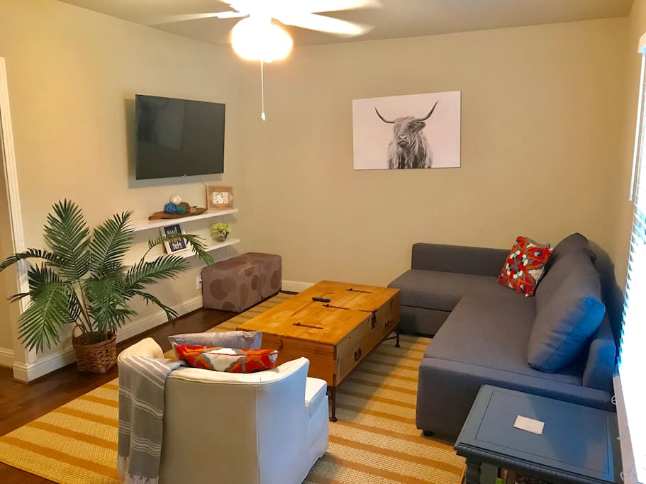 Main House: Smart Roku TV available with local stations. Games for all ages and a full sized, pull out sofa bed.