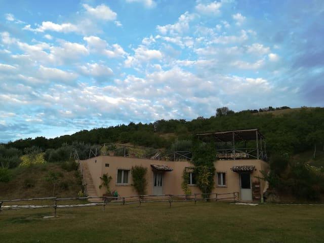 Villa con grande terrazza tra gli ulivi