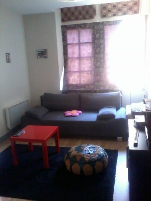 Salle télé, se transforme en 2ème chambre. Confortable