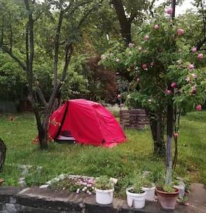 Backyard Camping /All Inclusive/