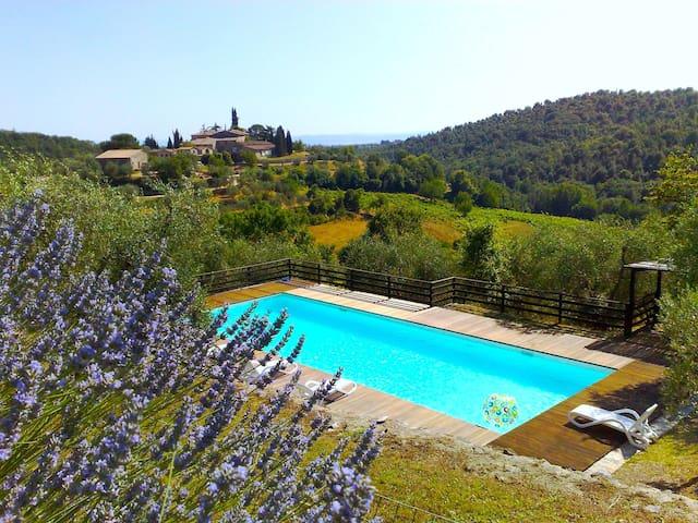 Le Picine in Chianti app. Rondini - Castelnuovo Berardenga - Pis