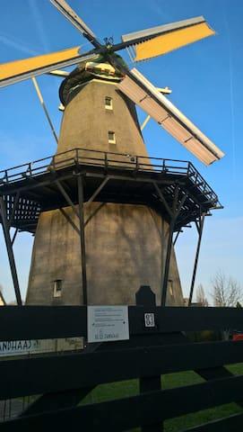 Windmill (de Zandhaas) , (1,1 km)