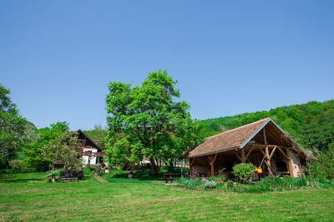 Na Okić - a private forest oasis