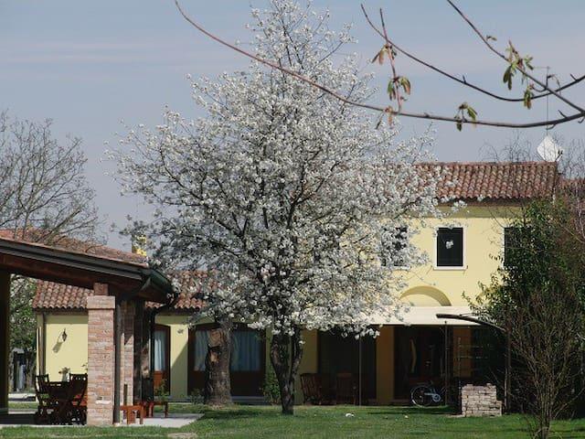 Particolari del Brenta - Apt Elisa near Venice