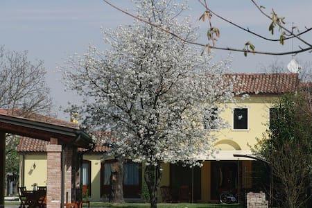 Particolari del Brenta - Apt Elisa near Venice - Oriago di Mira