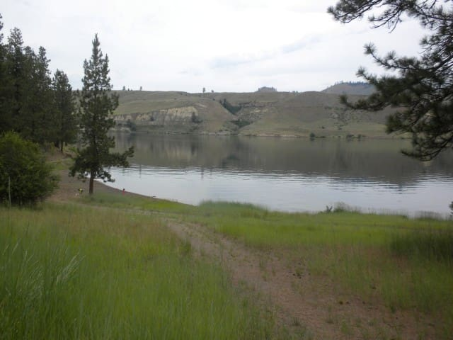 Waterfront Lake Roosevelt Cabin  - Davenport - Chatka